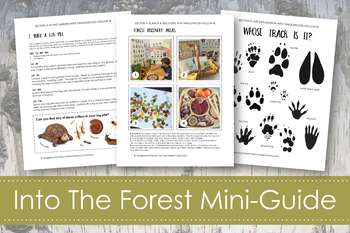 Forest Study Curriculum; Nature-Based Learning Guide; Ages 3-9