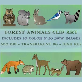 Forest / Woodland Animals Clip Art Set