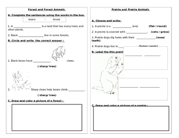 Forest and Forest Animals and Prairie and Prairie Animals
