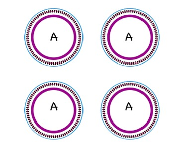 Form Circle Cards