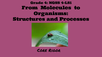 From Molecules to Organisms:Structure and Processes/ NGSS Grade 4:L-S1