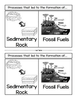 formation of sedimentary rock and fossil fuels by sciencerly tpt. Black Bedroom Furniture Sets. Home Design Ideas
