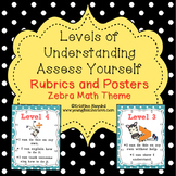 Levels of Understanding Posters and Rubrics {Zebra Math Theme}