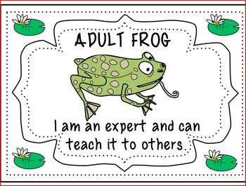 Formative Assessment with Frogs