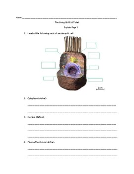 The Living Cell -Science-Bits Exit Tickets