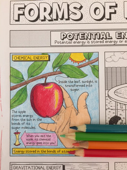 Forms of Energy Coloring Page with Crossword Puzzle and Graphic Organizer