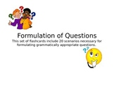 Formulation of Questions