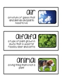 Foss Science Vocabulary Cards- Plants & Animals