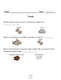 Fossil Assessments Science VAAP Visual Helper Autism HSS-COT 1