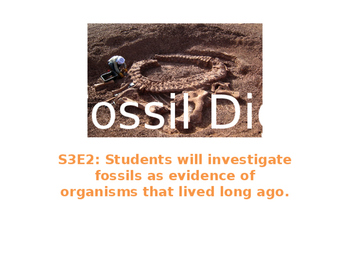 Fossil Dig (Cookie Lab)