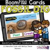Fossil Dig: Identifying Creatures and Plants within Fossil