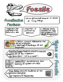 Fossil Doodle Notes
