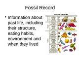Fossil Evidence (17.1) PowerPoint