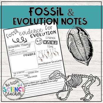 Fossil Evidence for Evolution Notes Sheet