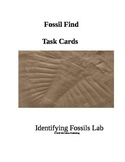 Fossil Find Task Cards 3rd Grade Science
