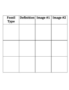 Fossil IDENTIFICATION LAB:  No Actual Samples Needed (Rave Reviews)