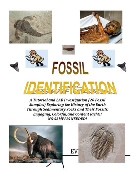 Fossil IDENTIFICATION LAB:  No Actual Samples Needed (Rave