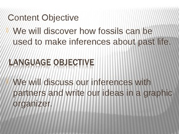 Fossil Inferences!!!