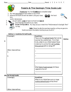 Fossil Lab - Student Worksheet / Lab write-up and observations