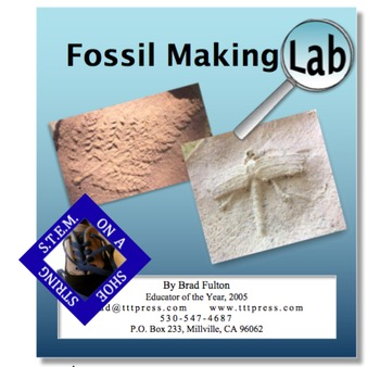 Fossil Making Lab