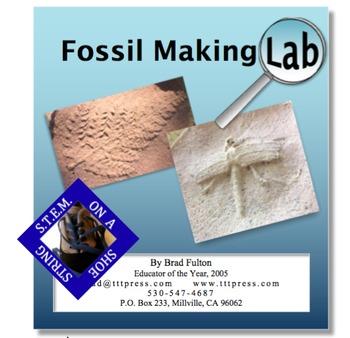 Fossil Making Lab