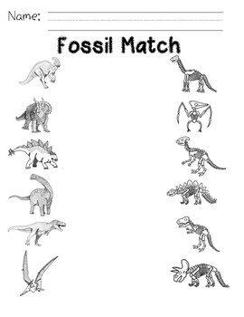 Fossil Match