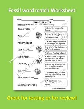 Fossil Word Match Worksheet