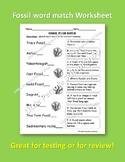 Fossil Word Match Worksheet