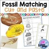 Fossil Matching: Cut and Paste Activity