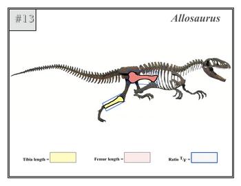 Fossil Measure Speed 1 SURFFDOGGY