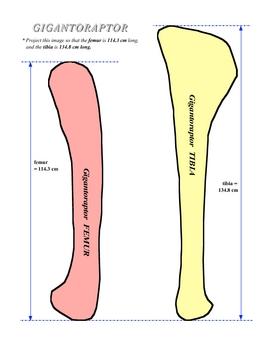 Fossil Measure Speed 2 SURFFDOGGY