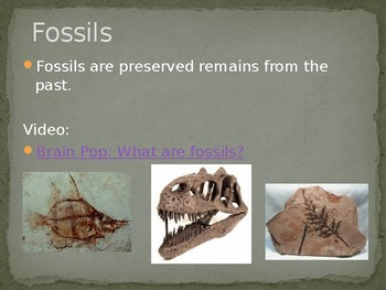 Fossil Powerpoint