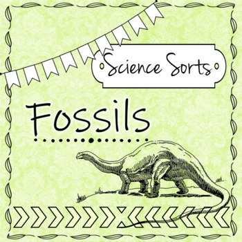 Fossil Sort