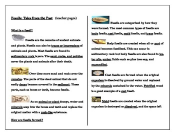 Fossil: Tales from the Past student worksheets and assessment