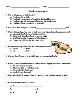 Fossil Test and Study Guide - 4th Grade Science