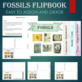 Fossil Types Flipbook
