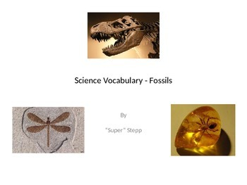Fossil Unit Vocabulary