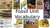 Fossil Unit Vocabulary PowerPoint