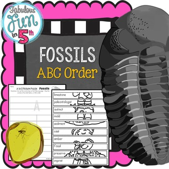 Fossil Vocabulary: ABC Order: Mystery Picture