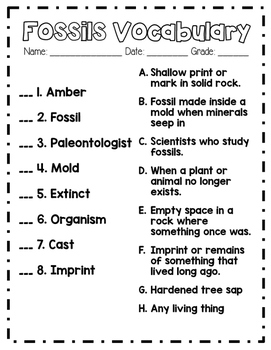 Fossil Vocabulary Activities