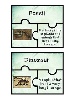 Fossil Vocabulary Puzzles