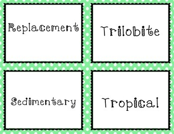 Fossil Vocabulary Task Cards (Utah Core 4th grade)