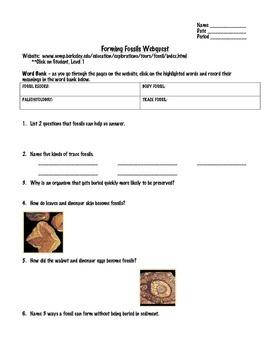Fossil Webquest