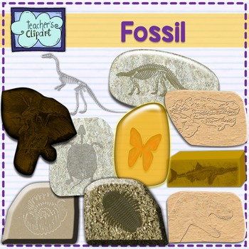 Fossil clip art - {Science Clipart}