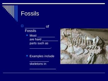 Fossil cloze