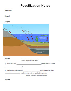 Fossilization PowerPoint, Notes, Webquest Activity -- Middle School