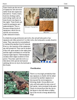 Fossilization Reading and Comprehension- Middle School Science