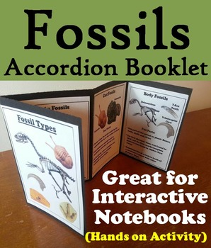 Types of Fossils Activity/ Interactive Notebook Foldable (Geology Unit)