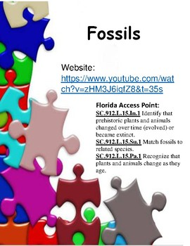 Fossils - Brain Pop Jr