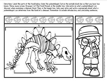 Fossils Bundle (Task Cards Included)